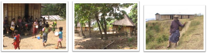 Timor 2012 3