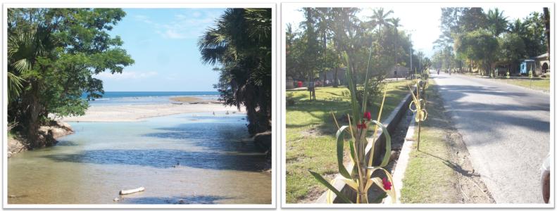 Timor_2013_5